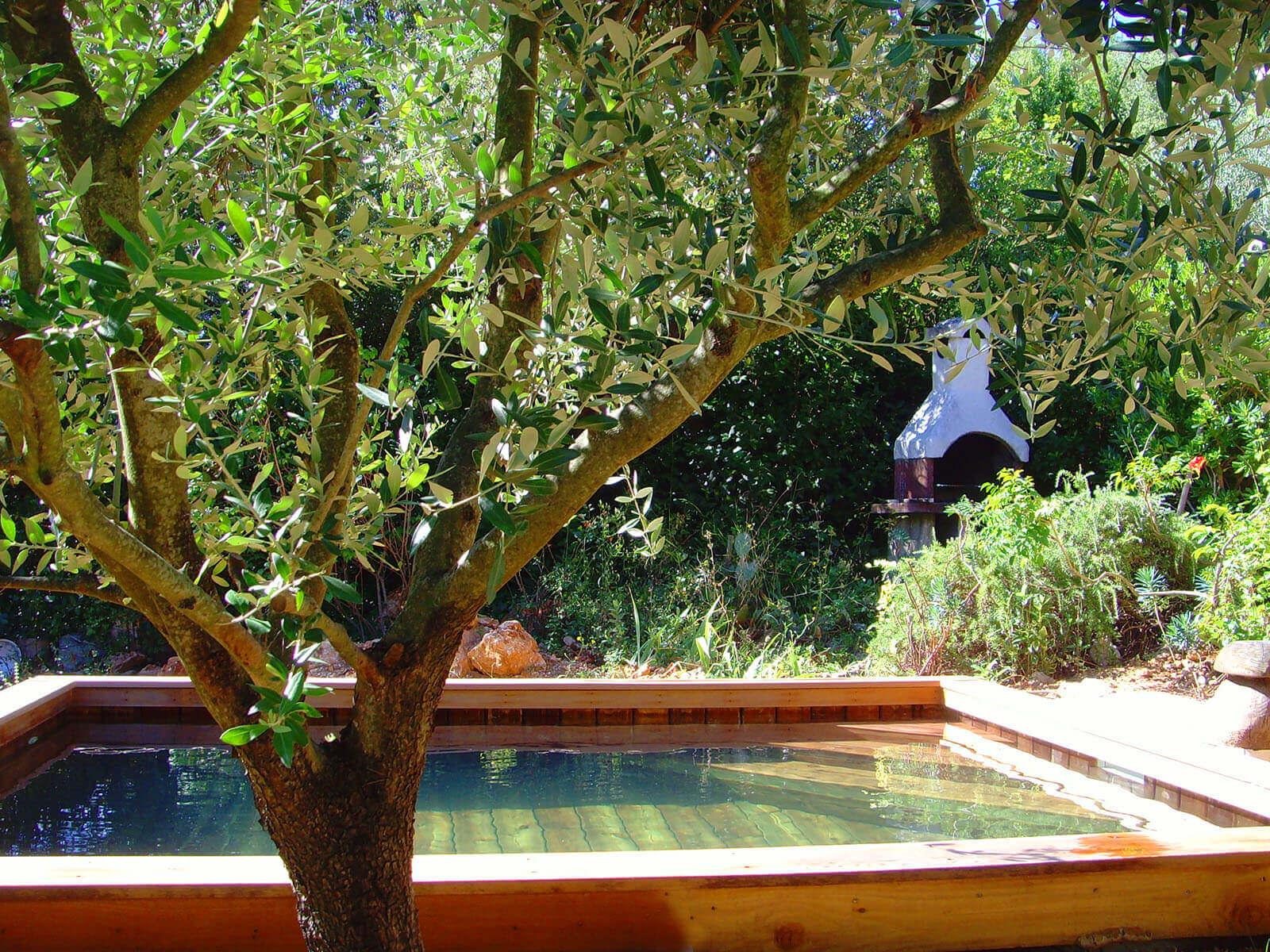 photos de petites piscines en bois sans liner odyssea piscines. Black Bedroom Furniture Sets. Home Design Ideas